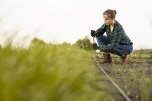 emprender-en-el-sector-agrícola-980x653